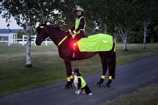 Reflecting rug, yellow with reflective USG horse