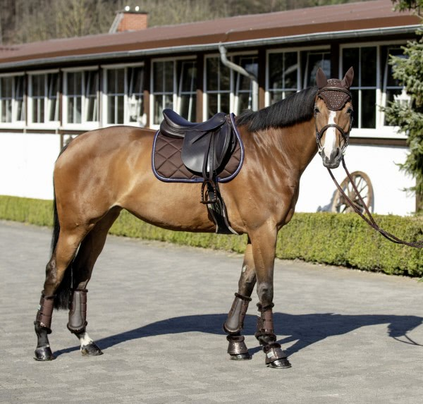 Quilted saddle cloth ''Magic''