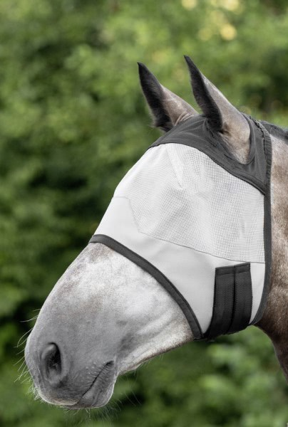 Fly mask, without ear protector