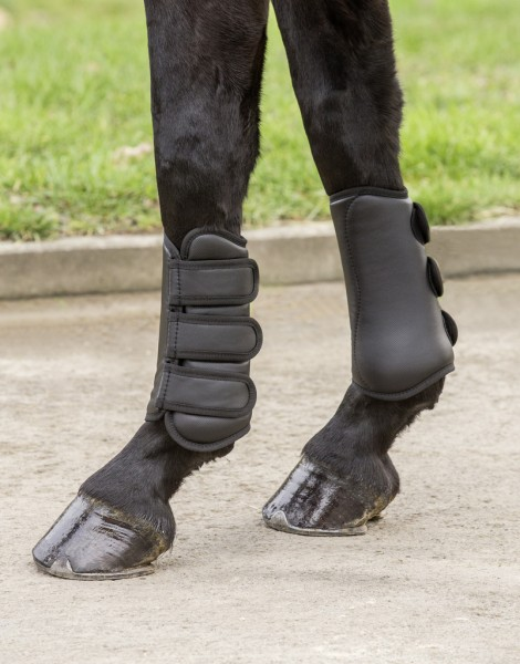 Dressage Horse boots with tendon protection