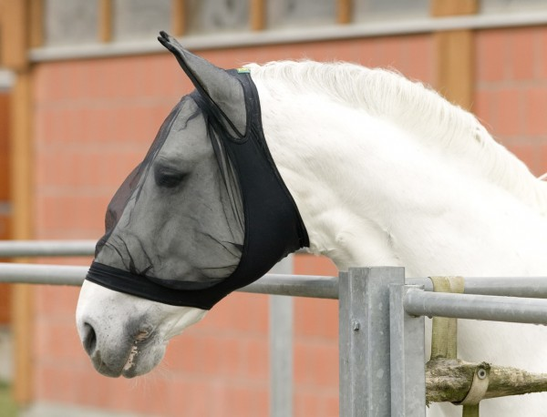 Fly mask with ear protector, black