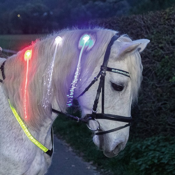 LED Mane clips