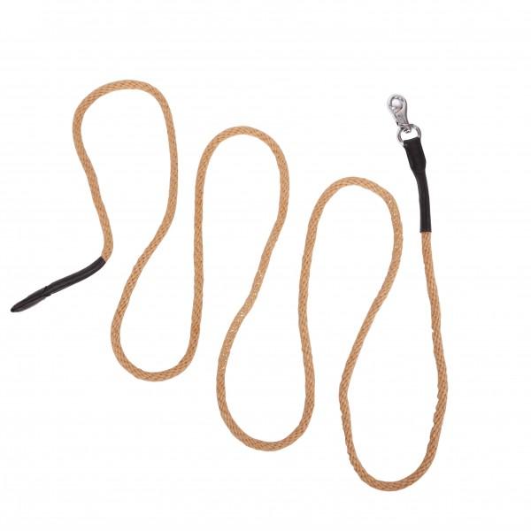 Ground work rope, bull snap, nature