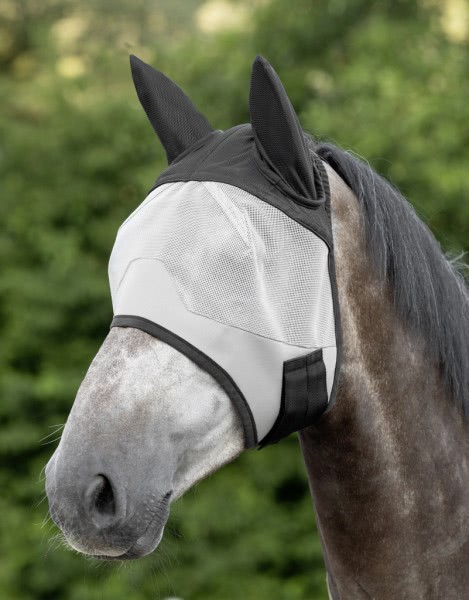 Fly mask, with ear protector